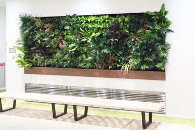 オフィス壁面緑化プラン