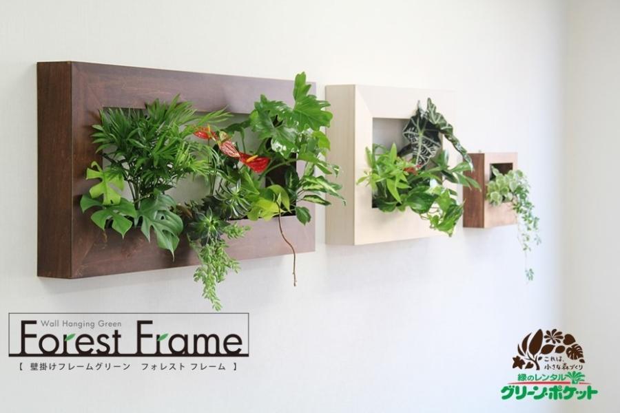 壁掛けフレームグリーン フォレストフレーム 壁から創まれた、小さな森