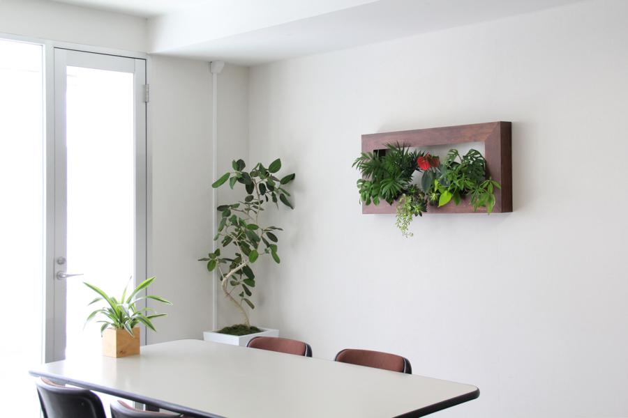 季節を楽しむ壁掛けグリーン「フォレストフレーム」