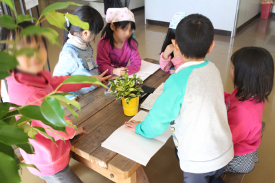 教育現場での実験